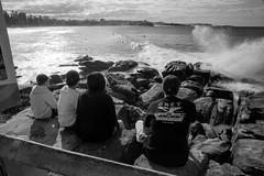 watching the surf, Manly beach, Sydney, winter 2018  #964 (lynnb's snaps) Tags: 35mm manly xtol bw blackandwhite film winter leicaiiif leicafilmphotography cv21mmf4colorskoparltm ilfordfp4 kodakxtoldeveloper manlybeach sydney australia coast 2018 street people surfers surf watching spectators ocean bianconegro blackwhite blancoynegro noiretblanc monochrome schwarzweis ishootfilm barnack