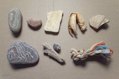 natural and man made beach finds... (CatMacBride) Tags: beachfinds crab leg rope driftwood shell pottery stone