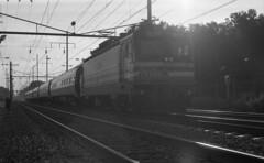 Northbound Metroliner At Bowie (DJ Witty) Tags: electriclocomotive film amtrak passengertrain photography nikon emd aem7