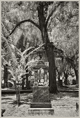 Oakdale Cemetery #1 IR 2018; Ornate Tombstone (hamsiksa) Tags: landscape cemeteries graveyards tombstones south deepsouth gravemarkers victorian blackwhite infrared digitalinfrared infraredphotography florida deland sleepingdead liveoaks spanishmoss