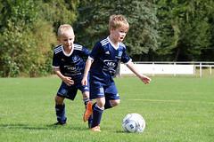 Feriencamp Reinfeld 15.08.18 - d (45) (HSV-Fußballschule) Tags: hsv fussballschule feriencamp reinfeld vom 1308 bis 17082018