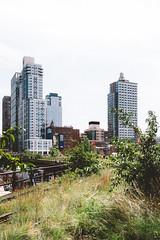 High Line (Thomas Ohlsson Photography) Tags: chelsea fujifilmxt2 fujinonxf1855mmf284rlmois highline hudsonyards manhattan newyork park thehighline thomasohlssonphotography walking