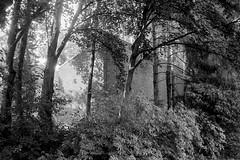 Museum Insel Hombroich (25/8) Tags: olympus trip35 agfaphoto apx400 ilfotecddx