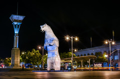 'long view polar bear' by don kennell (pbo31) Tags: bayarea california nikon d810 color september 2018 city urban boury pbo31 summer sanfrancisco night dark black art financialdistrict lightstream motion traffic roadway embarcadero ferrybuilding polar bear giant burningman sculpture 35ft standing globalclimateactionsummit reflection streetcar muni