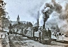 Ration train with Cpt. Mansfield, 21st Engrs onlocomotive. Menil-La-Tour, France July 3, 1918 NARA111-SC-17501-ac (SSAVE over 12 MILLION views THX) Tags: baldwinlocomotiveworks worldwari ww1 1918 narrowgauge lightrailway france aef