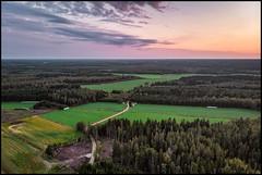 Gränholmi (Jonas Thomén) Tags: flygfoto aerial fields åkrar field åker skog forest drone drönare väg road starabyvägen dji mavic air clouds moln evening kväll kalhygge clearcut sandsundvandringsled