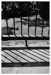 analog - Olympus Trip 35 / Gelbfilter - Ilford XP2 (tom-schulz) Tags: olympustrip35 ilfordxp2400 monochrom bw sw film 35mm analog gelbfilter frame rahmen berlin thomasschulz schatten balkon linien