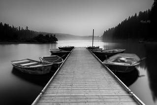 At Clear Lake, Oregon