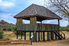 Hide in the veld (In Explore) (Johann (Sasolburg, RSA.)) Tags: hide peaceful tranquil wall wood houtmuur johanndejager ef24105mmf4lisiiusm canoneos5dmarkiv explored inexplore exploré