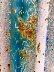Tapestries of Decay (rafalweb (moved)) Tags: pink blue orange rust rusty rusting decay texture dumpster apple iphone