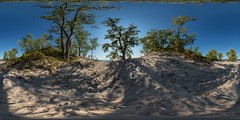 Perfect Summer Day in the Dunes of Prince Edward County, Ontario: North Beach Provincial Park (interactive 360degree pano) (auggie w) Tags: beach sand dunes greatlakes ontario pec sphere vr virtualreality panorama panorama360 360 summer trees provincialpark princeedward canada sandbanks