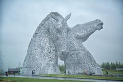The Kelpies, Falkirk (ebalch) Tags: kelpies helix falkirk canal sculpture horsehead forthandclydecanal scotland canon ebalch 5d heads