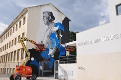 "Tomar - ""Bringing more life to Town"" (jaime.silva) Tags: danieleime tomar portugal portugalsko portugalia portugália portugalija portugali portugale portugalsk portogallo portugalska portúgal portugāle urban urbanart arteurbana mural muralpainting spray spraypaint spraypainting"