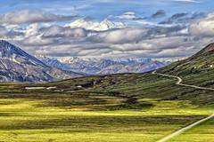 Mt. Denali 1 (custer01) Tags: mtdenali nature natural sky green travel landscape wilderness scenic alaskan america scenery range beautiful alaska denali road mountain view usa