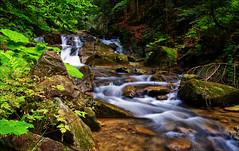 stream (witoldp) Tags: beskid beskidy potok żabnica water waterfall żywiecki forest poland