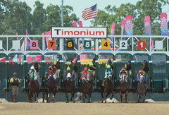 "2018-08-31 (71) r5 and they're off at Timonium (JLeeFleenor) Tags: photos photography maryland marylandracing timonium mdstatefair fair horseracing outside outdoors jockey جُوكِي ""赛马骑师"" jinete ""競馬騎手"" dżokej jocheu คนขี่ม้าแข่ง jóquei žokej kilparatsastaja rennreiter fantino ""경마 기수"" жокей jokey người horses thoroughbreds equine equestrian cheval cavalo cavallo cavall caballo pferd paard perd hevonen hest hestur cal kon konj beygir capall ceffyl cuddy yarraman faras alogo soos kuda uma pfeerd koin حصان кон 马 häst άλογο סוס घोड़ा 馬 koń лошадь gate start"