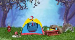 Squirrels Camping 2018 (hey its k) Tags: 2018 backyard camping squirrels canon6d img6623e corn hotdog tent lantern fun