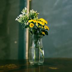 DSC01576 (Mudita Meraki) Tags: sonya7ii carlzeissplanar50mmf17 flower plant