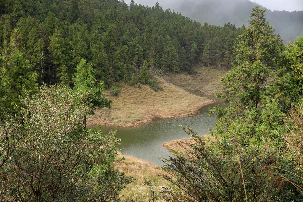 太平山翠峰湖環山步道 |走在泥濘的道路上,只為途中美景 | 宜蘭大同鄉8