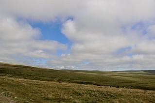 Dartmoor National Park-1
