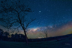 Milky Way 7 - Piratininga/SP (Enio Godoy - www.picturecumlux.com.br) Tags: niksoftware longexposure piratiningasp milkyway ps viveza2 sonyalpha stars dfine2178178 sky sony sony03 night sonyalpha6300 stacking colorful nature naturephotography ngc