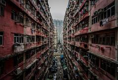 Urban Jungle (mcalma68) Tags: hong kong cityscape architecture density hongkong