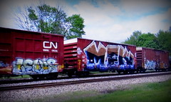 (timetomakethepasta) Tags: levis mfk freight train graffiti art wholecar cn canadian national