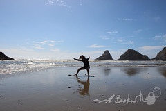 Oregon.7.14.18.14 (jrbeckwith) Tags: summer roadtrip 2018 jrbeckwith jbeckr family vacation oregon or wildlife coast pacificocean ocean beach sealioncave sea lion cave sealion cottagegrove