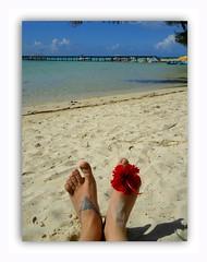 """Hello . . . I'm in holidays . . .SoS """"Happy Feet"""" (nickylechatreux) Tags: plage mer lagon bleu sos smileonsaturday summer sable ciel eau été feet pied happyfeet océan"""