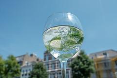 Gin Tonic (trsl1234) Tags: gin tonic drink glass
