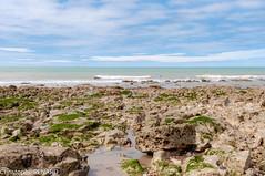 Rocher (fox7725) Tags: beach bleu blue borddemer color couleur eau france green grey gris landscape lieu mer nature normandie normandy océan paysage pierre place plage roche rock sea vert water crielsurmer