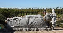 Buddha Eden! (Jorge Cardim) Tags: buddha eden bombarral portugal garden estátua jardim azul blue statue sky color