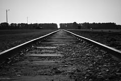 ~Railway to Eternity~ (JERRY TAHA PHOTOGRAPHY) Tags: jerrytahaproductions jerrytaha jerrytahatravel travel bw blackandwhite black railwaystation railway eternity worldtravel wanderlust world wwii war auschwitz birkenau polska poland nazi hitler jews jewish joden israel israël holocaust train hellonearth