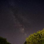 Milky Way over Western Pennsylvania Trees thumbnail