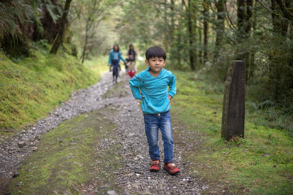 太平山翠峰湖環山步道 |走在泥濘的道路上,只為途中美景 | 宜蘭大同鄉23