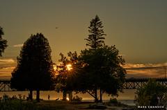 Mackinac Sunset (mswan777) Tags: michigan 70300mm sigma d5100 nikon glow orange scenic nature outdoor mackinaw straits water beach shore park bridge mackinac travel evening silhouette pine tree cloud sky sunset