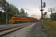 BPRR 3330, SIBF, Ashford Jct, Ashford, NY, 09-07-18 (mikeball1374) Tags: ashfordjct buffalo newyork bprr sd403 sibf train transportation trainphotography railfanning railroad photography matchedpair locomotive freighttrain emd trains