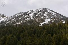 102. California Mountains (brottj316) Tags: laketahoe msdixieii emeraldbay