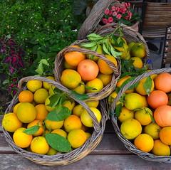 Greece (mademoisellelapiquante) Tags: greece europe fruit heraklion knossos citrus orange crete