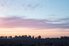 A morning in pastel (ulbespaans) Tags: ochtend pastel sky mood colours landscape agriculture background clouds photography