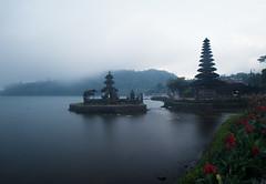 Bali-77 (tommasodonelli) Tags: