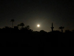 Arizona at 2am (oybay©) Tags: night sunset arizona cactus silhouette color colors weather fall sky skyline grass dusk city