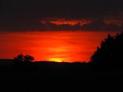 Sky on fire (elisabeth.mcghee) Tags: sonnenuntergang sunset abendhimmel abendrot clouds wolken sky himmel sun sonne bäume trees wald landschaft landscape oberpfalz upper palatinate