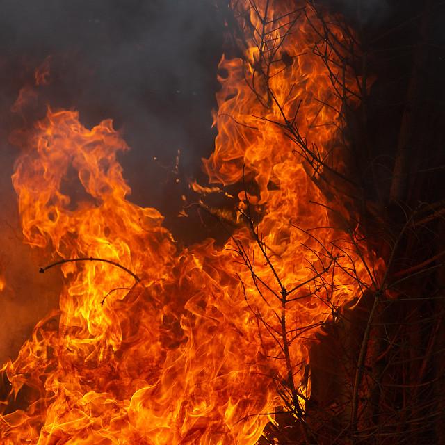 Testraum in Flammen I