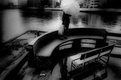 park 671 (soyokazeojisan) Tags: japan osaka bw city park people blackandwhite river umbrella monochrome analog olympus m1 om1 21mm film trix kodak memories 昭和 1970s 1975
