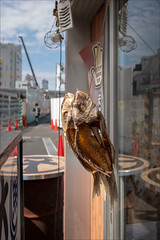 shimotika-2521-ps-w (pw-pix) Tags: fish fishes frames dry drying dried filleted hanging hangingup string strungup strange unusual interesting glass window door sign stop drum light cones street person walking lane crane pane reflections fishrestaurant buildings hot humid morning smallstreets narrowstreets shimotika shimotikazawa setagaya tokyo tokyoto japan peterwilliams pwpix wwwpwpixstudio pwpixstudio