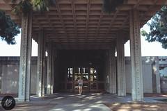 Barnsdall Art Park (Nikorasusan) Tags: america travel tourist losangeles la streets city citystreets streetphotography fujifilm xpro2 fujixpro2 roadtrip roadtrip2018 roadtripusa usroadtrip westcoastroadtrip westcoast leftcoast