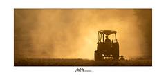 Staub in der Dämmerung -  Dust in the dusk (mmsig) Tags: staub traktor abendlicht wolke landwirtschaft sommer gold trockenheit dürre 2018 wedemark dust tractor eveninglight cloud agriculture summer sun drought sonne efs55250mm f456 is ii 60d