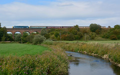 D212 (elr37418) Tags: 40012 d212 east lancashire railway bury roch viaduct river england uk nikon d7100 water blue br cfps english electric flickr red brick bridge trees autum colour aureol type4