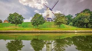Windmill - 5901
